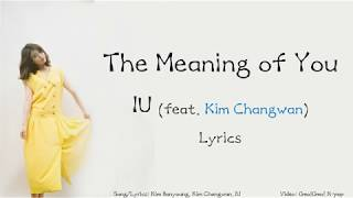 IU - The Meaning of You Lyrics (Han/Rom/Eng)