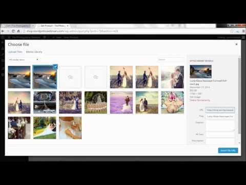 Webinar: Set up shop on your WordPress website