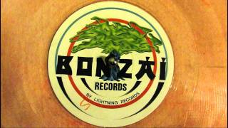 BONZAI RECORDS - BELGICA WAVE PARTY - THE WAVE