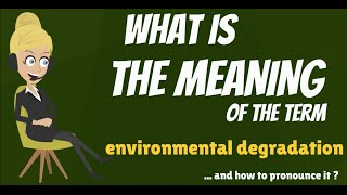 What is ENVIRONMENTAL DEGRADATION? What does ENVIROMENTAL DEGRADATION mean?