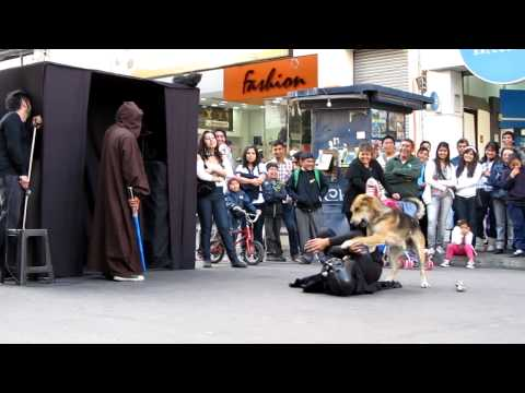 mackin - A Dog Takes Down Darth Vader During a Street Performance