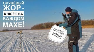 ОКУНЁВЫЙ ЖОР Поиск и Ловля Окуня на Балансир КАБАНЧИКИ ОДИН ЗА ДРУГИМ Зимняя Рыбалка 2019 2020