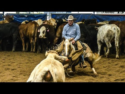 Darling Downs Futurity Show Non Pro Classic Challenge Final   Phil Conaghan riding Suicide Blonde