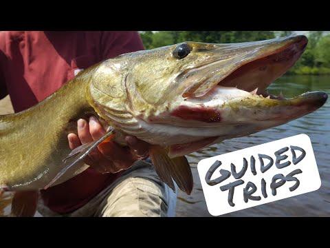 Upper Peninsula Michigan Fishing Guide | Haight's Wanderings Fishing Guide