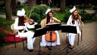 Свадебная музыка - встреча гостей в зоне Welcome