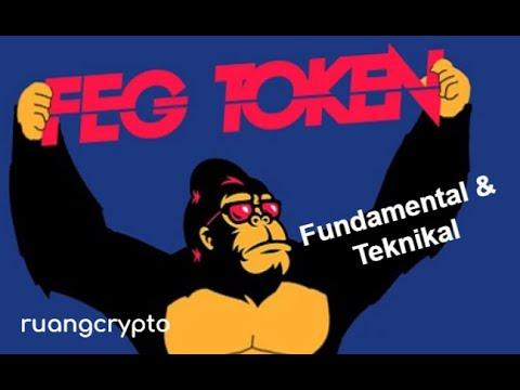 FEG Token –  salah satu coin micin yang potensi naik