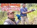 Menjaring Burung Di Hutan Dapat Warna Cantik Tengkek Udang Cekakak  Mp3 - Mp4 Download