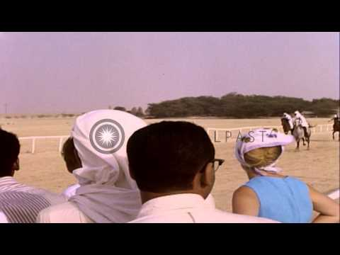 Arabs ride horses and camels in a race and spectators watch the race in Bahrain. HD Stock Footage thumbnail