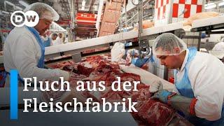 Deutschland: Corona-Fluch aus der Tönnies-Fleischfabrik | Fokus Europa