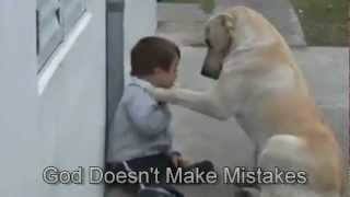Sweet Mama Dog Interacting With A Beautiful Child With Down Syndrome. From Jim Stenson.
