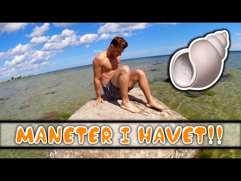 Strandhäng på vackra Öland | vlogg
