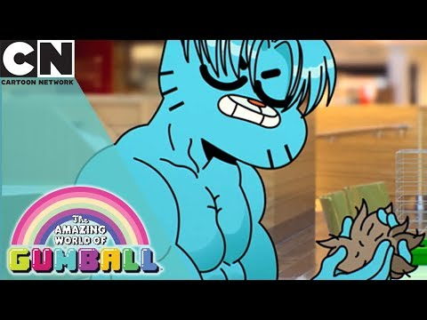 The Amazing World of Gumball | That's Not a Pet | Cartoon Network