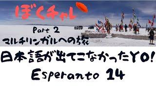 【ぼくチャレ 2】DuolingoでEsperanto #14 日本語が出てこなかったYO!一つ一つのカテゴリを極めて行くYO!