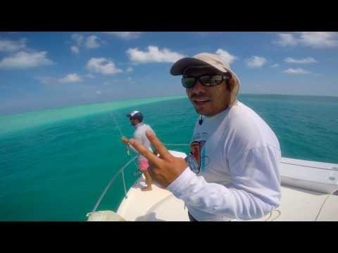Arrecife Alacranes Yucatan