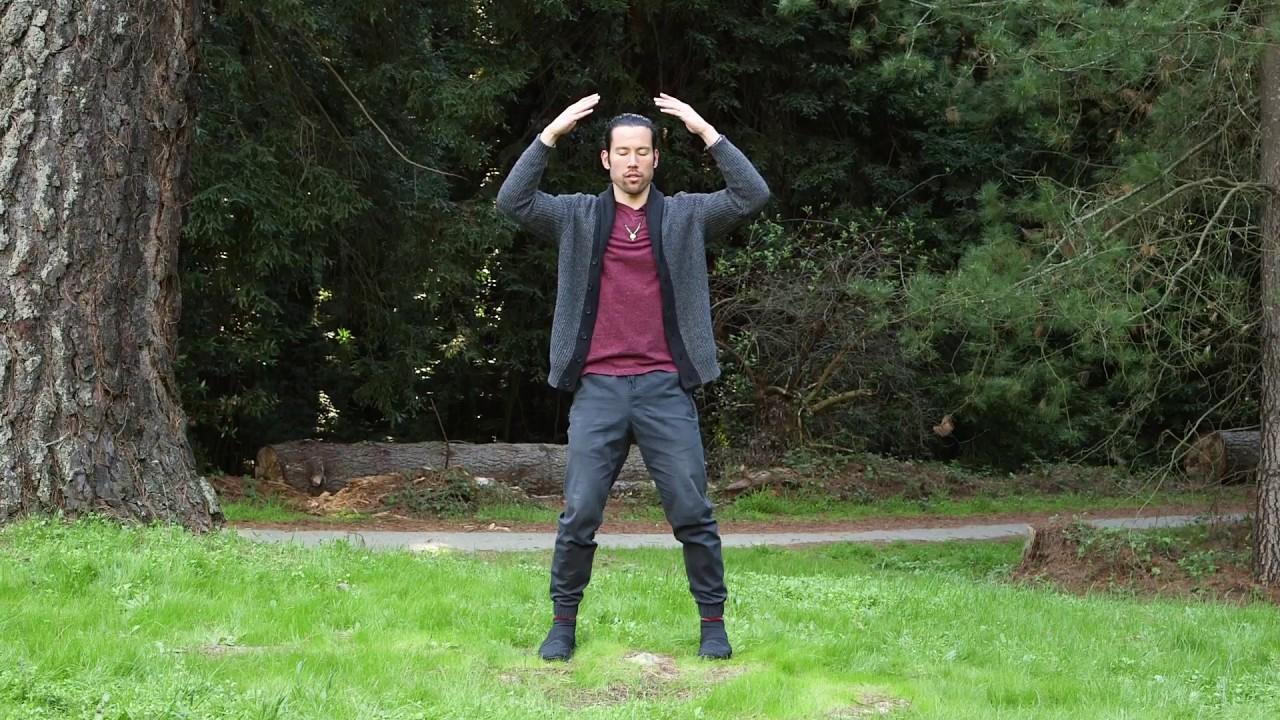 Immortal Form Qigong in the Sacred Redwoods