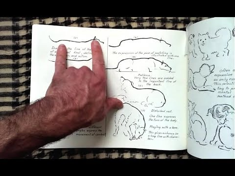 Anatomy and drawing victor perard | get this anatomy pdf boo… | flickr.