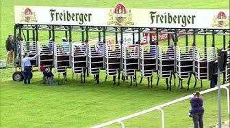 Galopprennbahn Dresden 15.07.2017 - Rennen 1