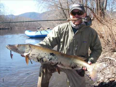 2008 2009 winter fishing with the long rod in west for West virginia out of state fishing license