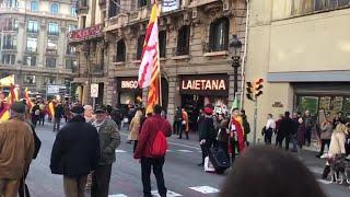 Manifestación de Barcelona por el Día de la Constitución: 'Pedro Sánchez traidor' (1)
