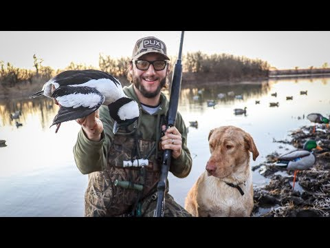 Duck Hunting A Big Watershed With 7 Different Species!! (INSANE MIXED BAG)
