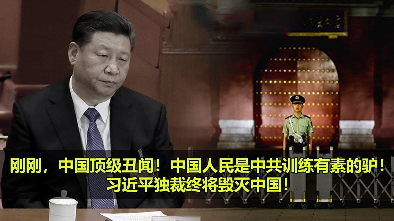 习近平6月22日最新视频,刚刚,中国顶级丑闻!中国人民是中共训练有素的驴!习近平独裁终将毁灭中国!