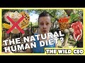 The Natural Human Diet? (Yes There Is One!)