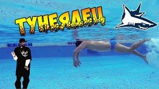 Как научиться плавать кролем. Учимся плавать. плавать правильно