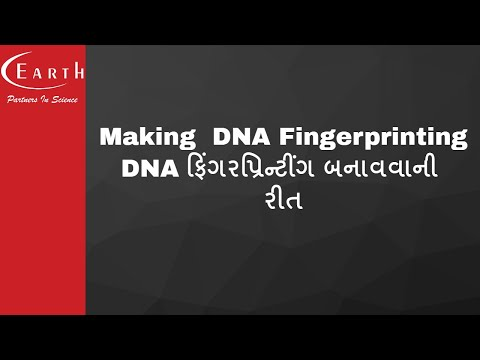 Making  DNA Fingerprinting | DNA ફિંગરપ્રિન્ટીંગ બનાવવાની રીત | Molecular Basis of Inheritance