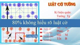 Luật cờ tướng Việt Nam cơ bản và cần thiết.