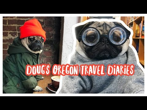 Oregon Travel Diaries - Doug The Pug