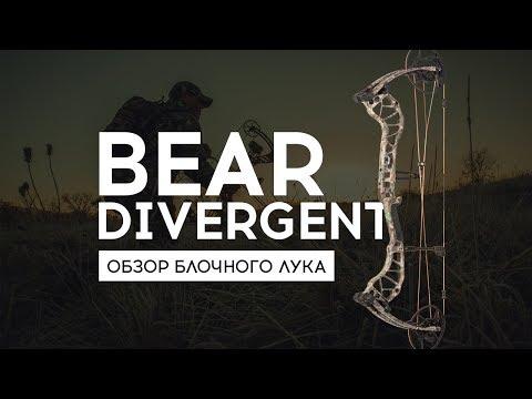 Обзор блочного лука Bear Divergent 2019 | Bear Archery Divergent