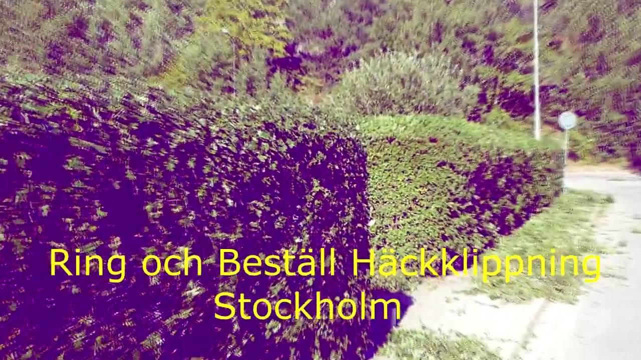 Häckklippning   stockholm   youtube