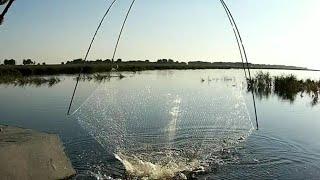 Рыбалка на паук подъёмник Десять подъёмов.Пол мешка рыбы. Дуги согнуло от такой рыбы. 2я часть