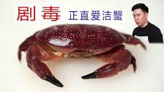 """Taste"" Honest Aijie Crab, which is as poisonous as pufferfish"