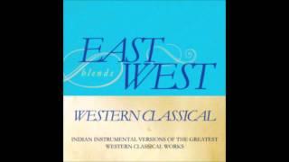 Swan Lake Op. 20 - Scene (Tchaikovsky): Shehnai cover