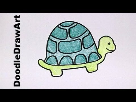 Drawing How To Draw Cartoon Turtle Step by Step Drawing Lesson