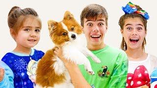 Nastya Artem Mia - Geschichten für Kinder über einen Hund und neues Spielzeug