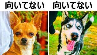 子どもにとって危険な犬種10