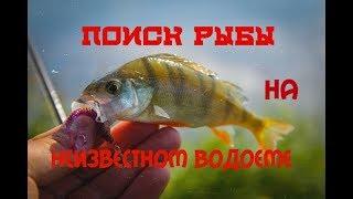 поиск рыбы на неизвестном водоеме.  Ловля окуня