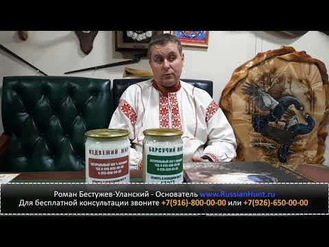Медвежий и барсучий жир от ожогов - лечение народными средствами