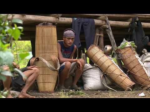 INDONESIAKU | SUKU TAU TAA WANA, MERDEKA KAMI (14/08/18) 1-3