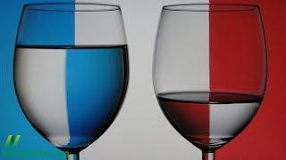 Co vysvětluje francouzský paradox?
