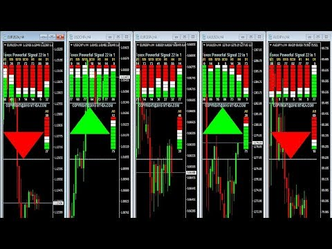 Forex live signals software