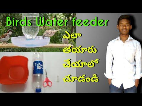how-to-make-a-bird-water-feeder-in-telugu/telugu-diy-home-made-plastic-bottle-bird-water-feeder
