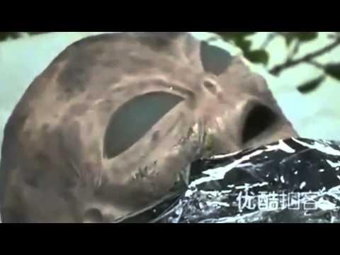 Alien On Japan's TV News