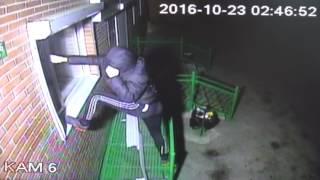 Камеры наблюдения - кража со взломом в магазине Искитима(Видео ГУ МВД по НСО. Читать на сайте http://berdsk-online.ru., 2016-11-25T05:56:09.000Z)