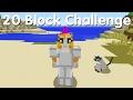 Minecraft PS4 - 20 Block Challenge - Lion Tamer (20)