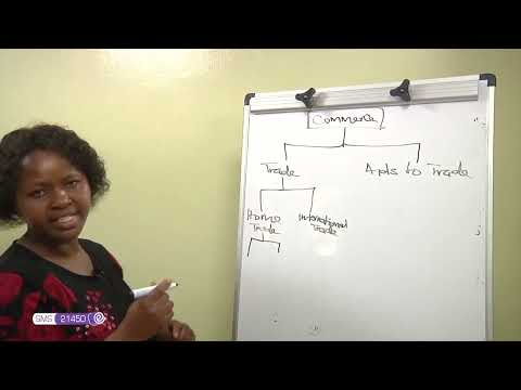 FORM 1 BUSINESS STUDIES TYPES OF BUSINESS ACTIVITIES