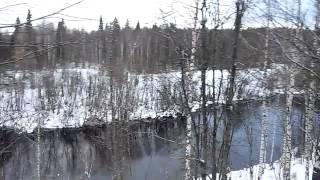 Природа отдых рыбалка Республика Коми(Река Тобысь без рыбы., 2015-10-28T12:56:27.000Z)