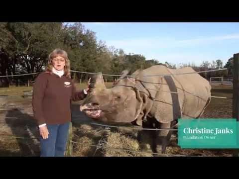 Carson Springs Wildlife Conservation Foundation